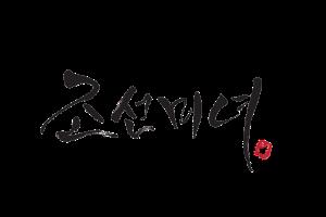 beauty of joseon logo